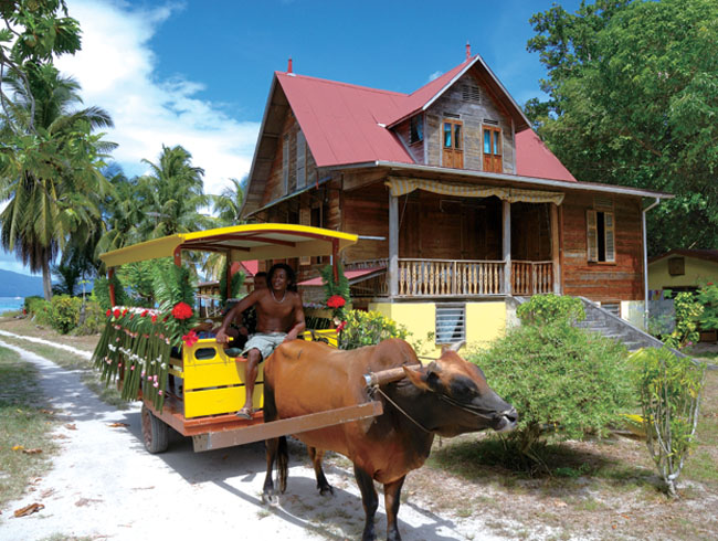 Ox carts in Seychelles