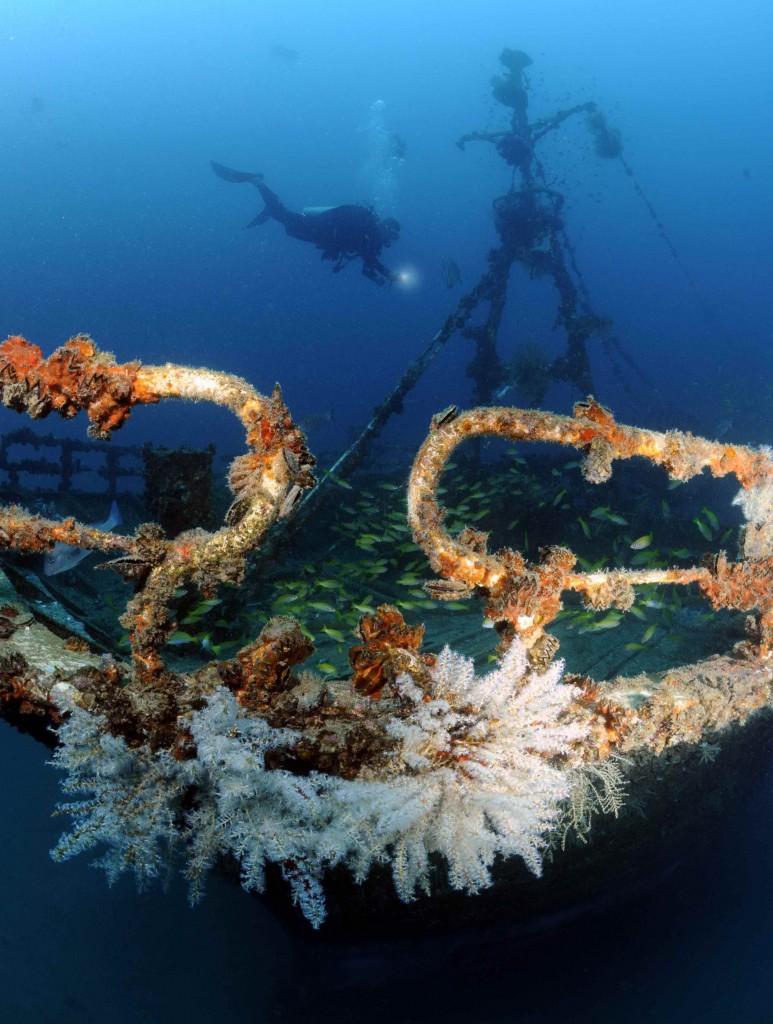 Aldebaran Wreck Mahe Seychelles