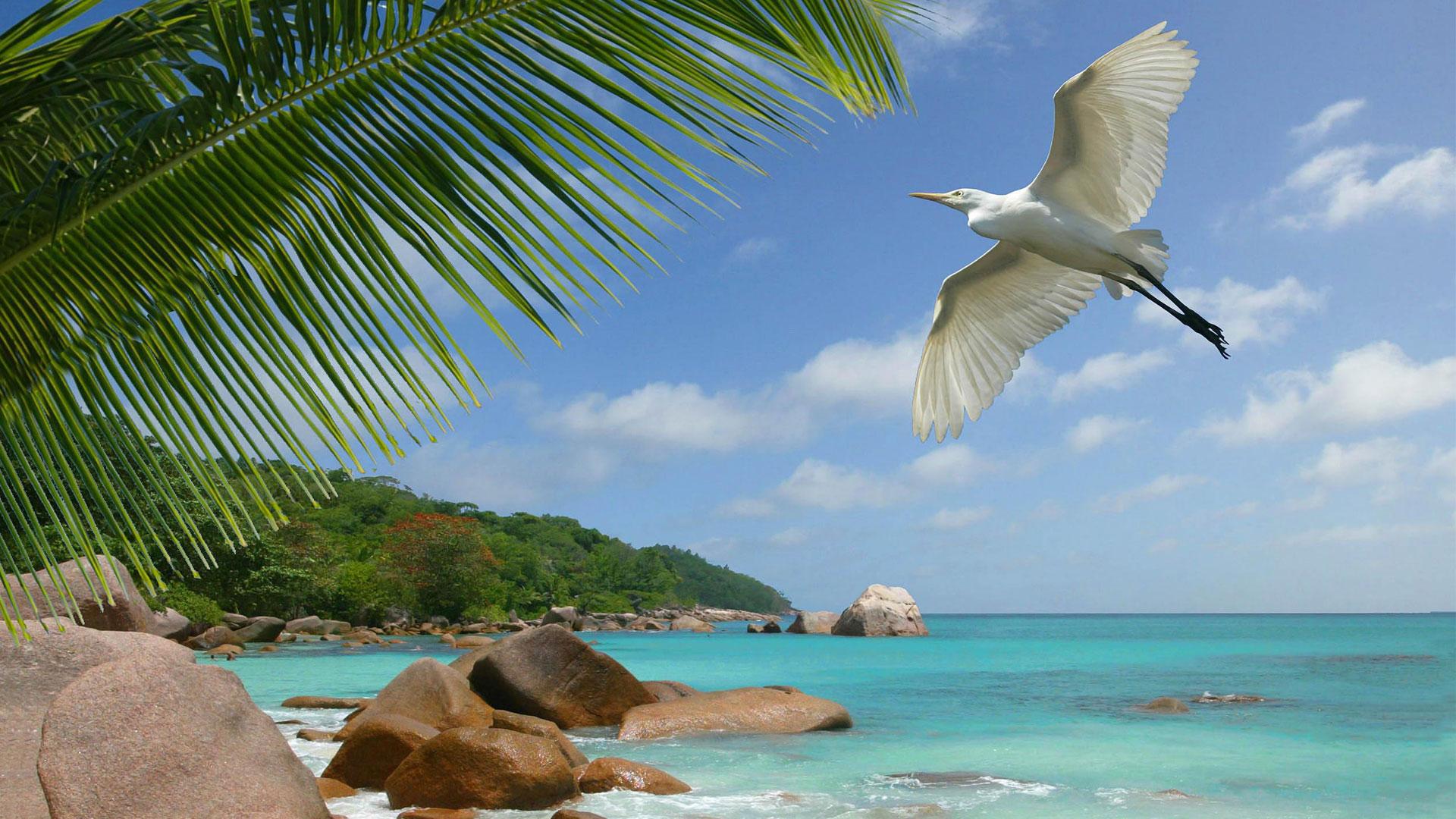 Seychelles a hidden gem