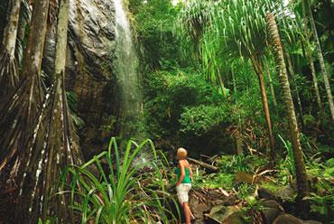 Seychelles' Nature