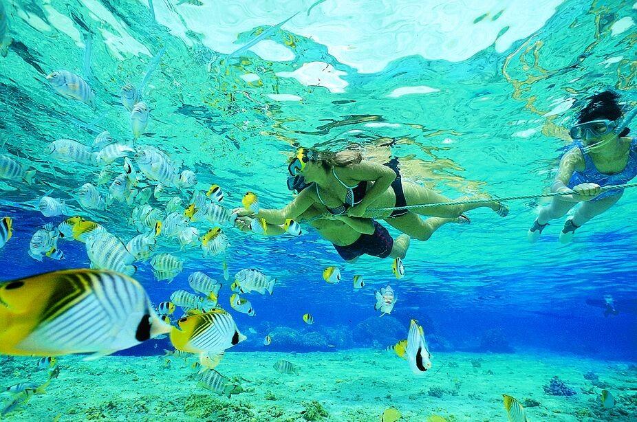 Plongée en Apné Réunion