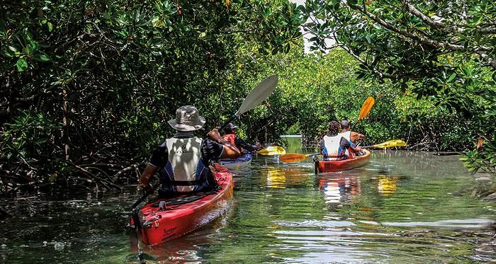 Kayaking Ile D'Ambre