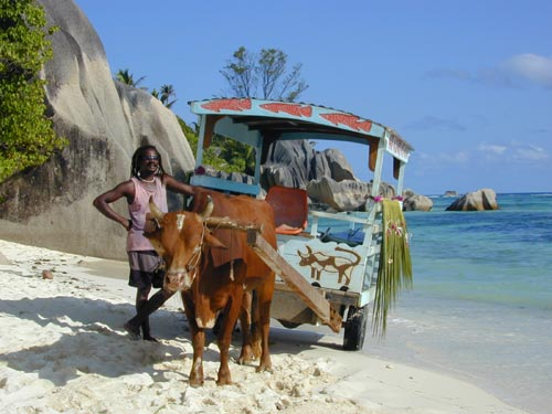 Ox Cart La Digue Seychelles