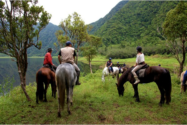 Horse Riding Reunion