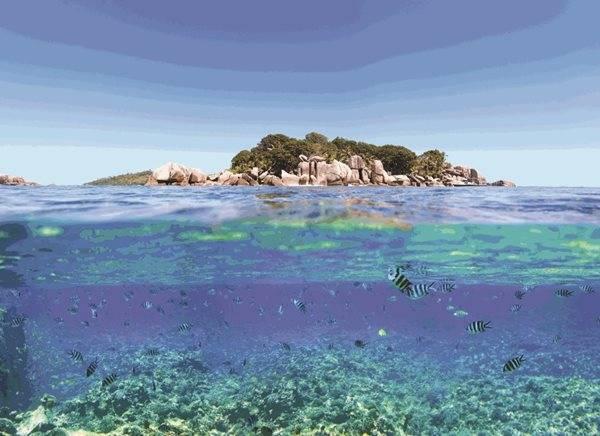 Raised Granitic Island seychelles