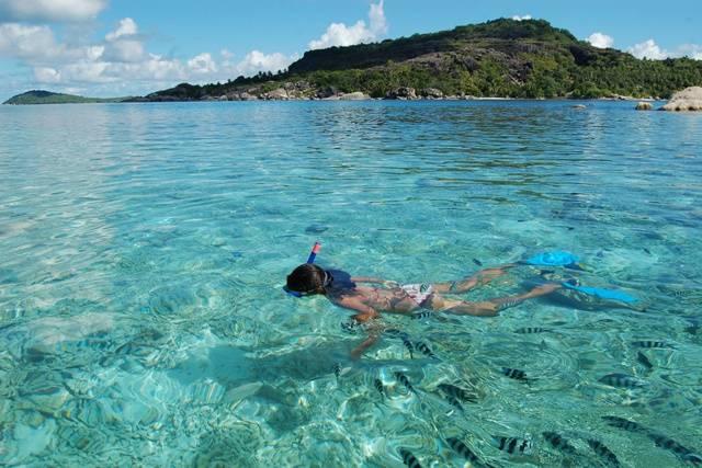Seychelles Marine life