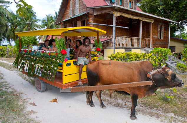 La Digue- Ox Carts