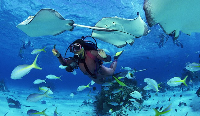 Diving Seychelles
