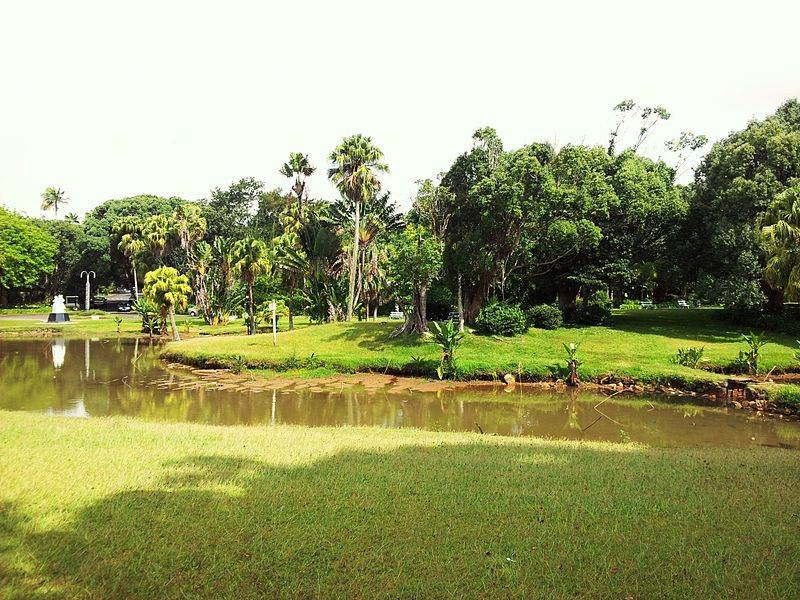 Curepipe Botanical Garden