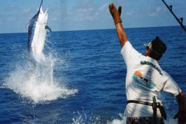 Big Game Fishing Mauritius