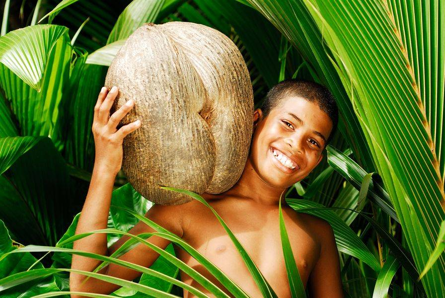 Seychellois-boy-carrying-a-coco-fesses