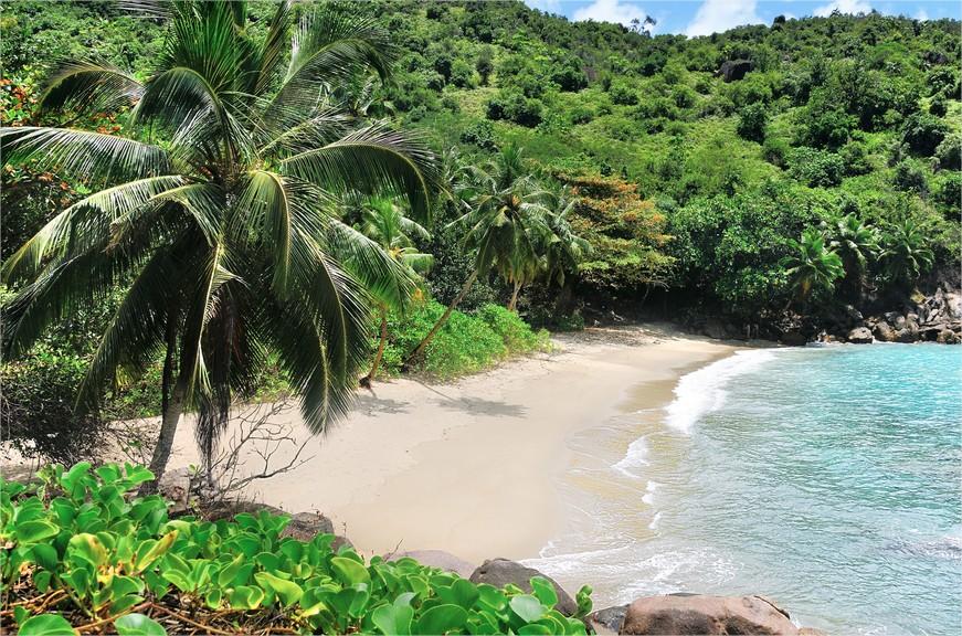 La plage d'Anse Major