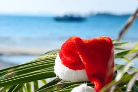 Christmas Exotic Holidays