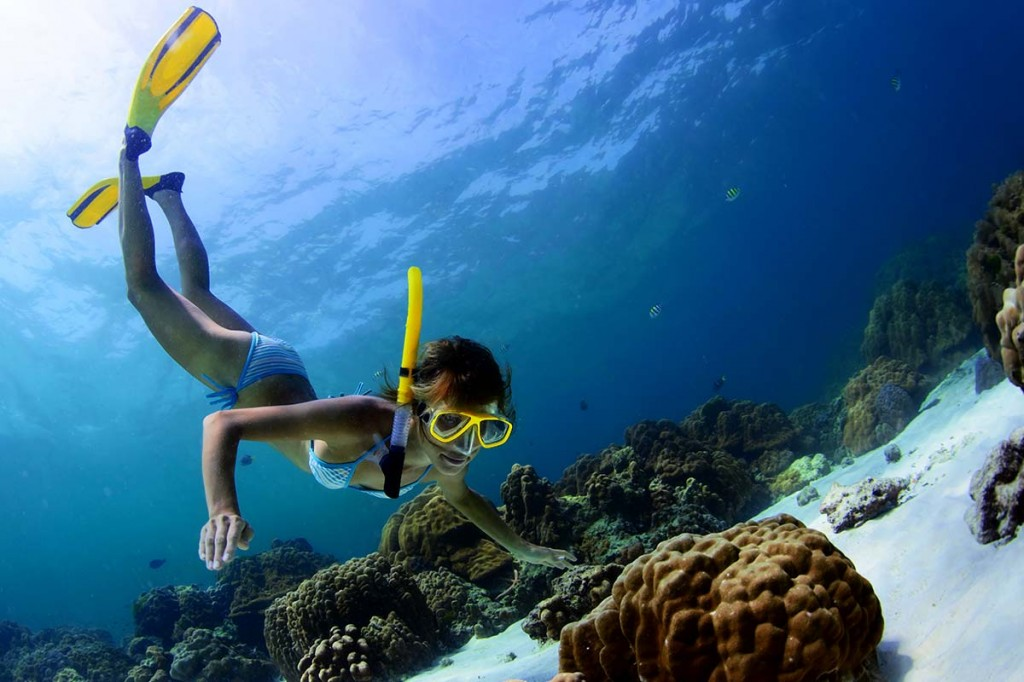 Snorkeling in the clear waters of the Maldives