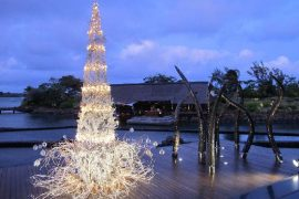 Christmas-in-Mauritius