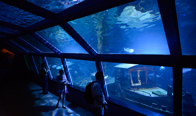 L'Aquarium de la Réunion
