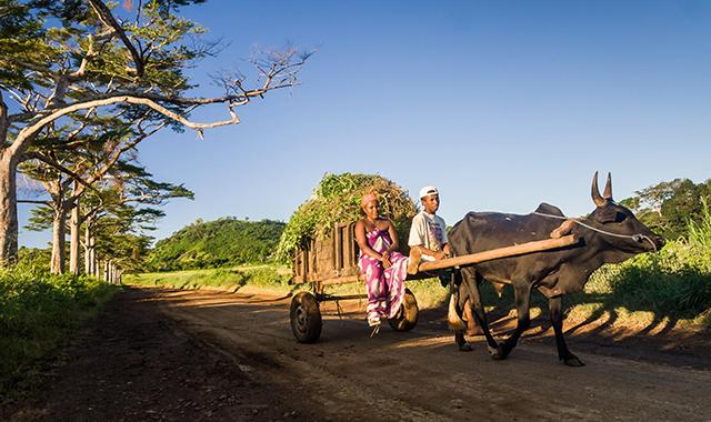 culture Madagascar