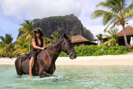Horse riding Mauritius