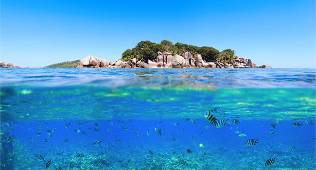 Guide to the Seychelles Islands