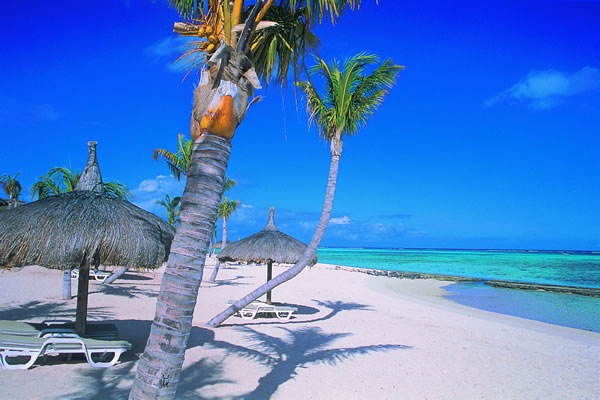 Things to do and see in mauritius