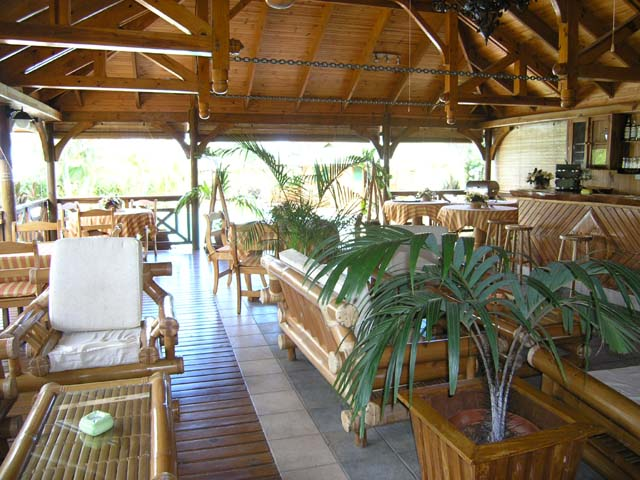 jardin des palmes