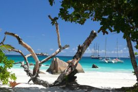 anse-lazio-praslin
