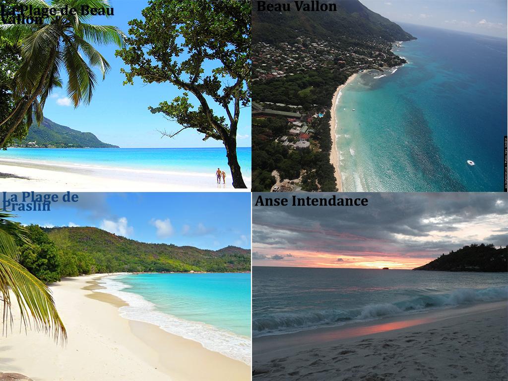 Seychelles mix