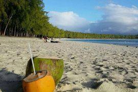 Mauritius Coconut beach