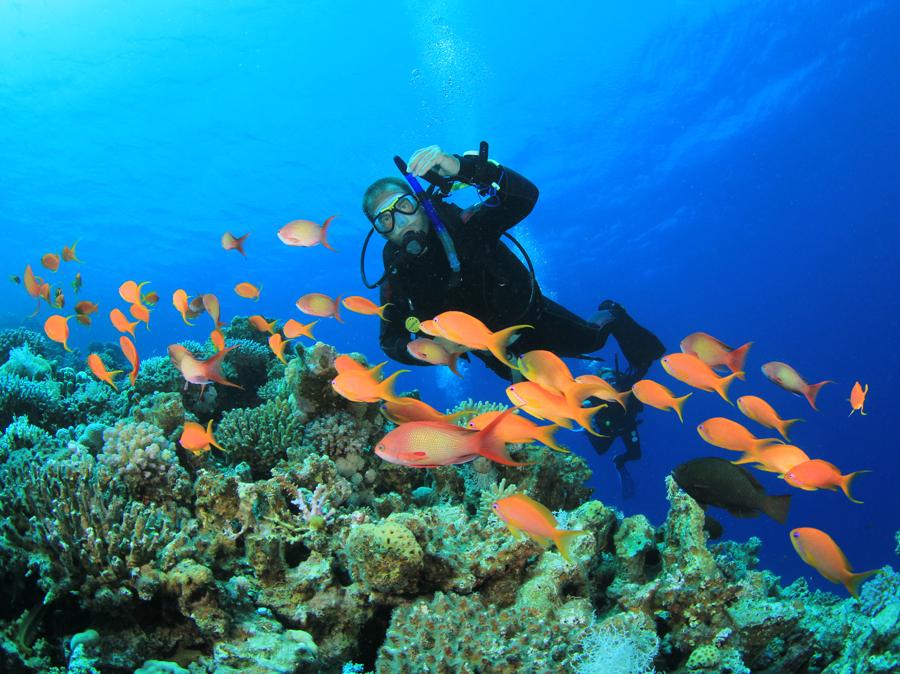 scuba-diving-mauritius