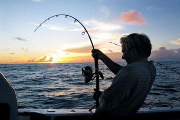 Sea fishing trips