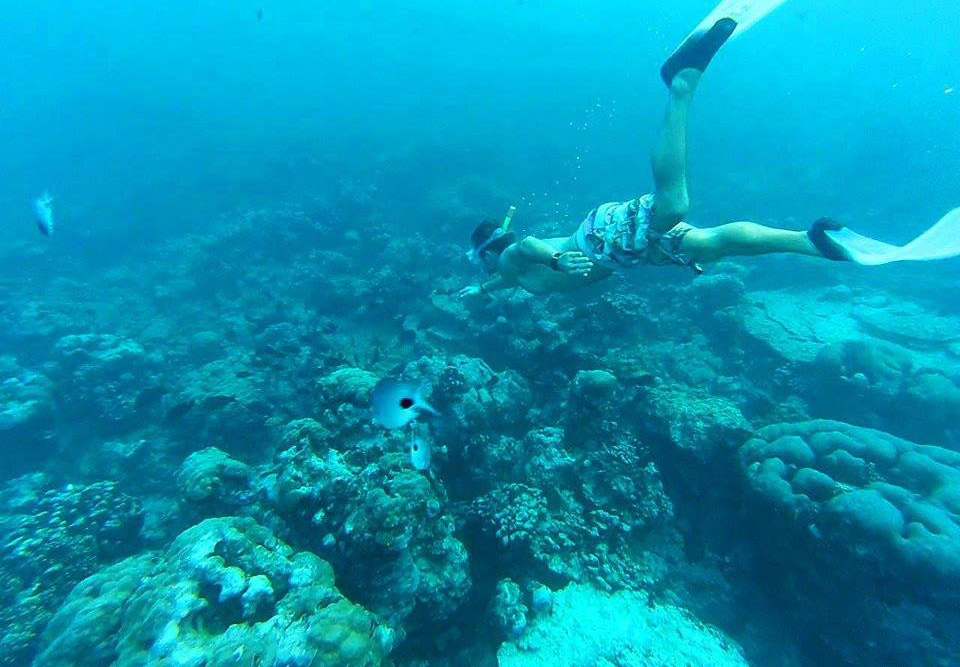 Snorkelling in Mauritius