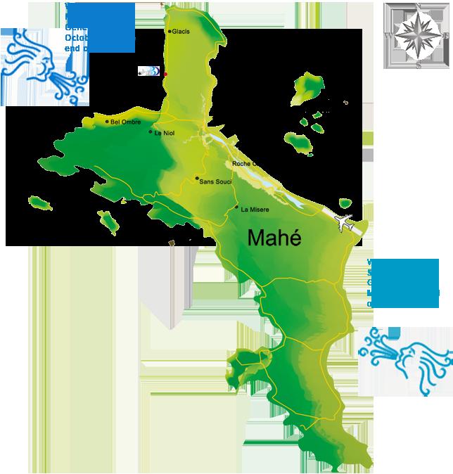 Trade wind- Mahe island