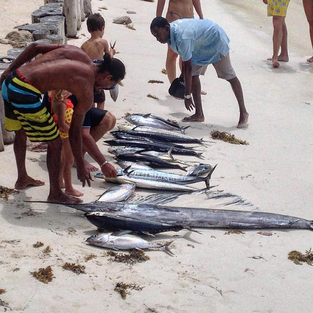 Fishing Seychelles