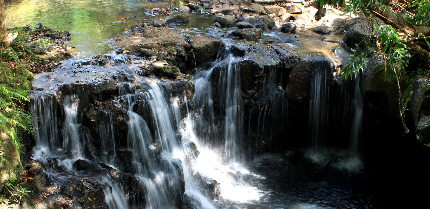Mauritius attractions: Waterfall at Vallée des couleurs