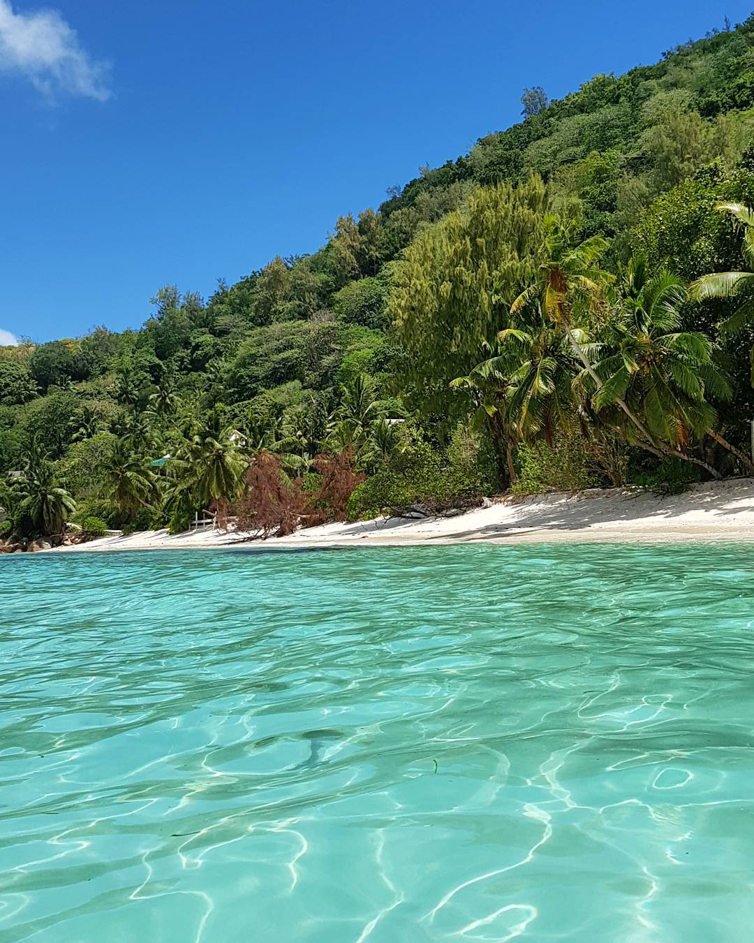 Seychelles Island Beaches: Why Fly To The Seychelles?
