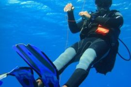 Mauritius divers