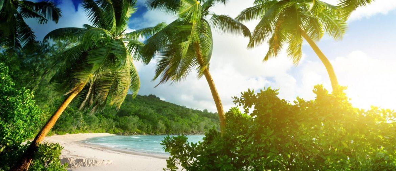 Pristine beach Seychelles