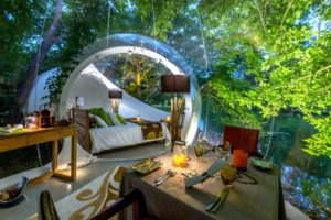BUBBLE LODGE